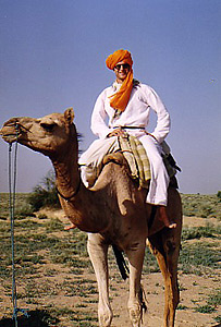Kotis of Arabia