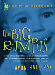The Big Rumpus cover